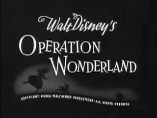 File:OperationWonderland3.jpg