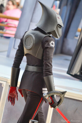 File:Seventh Sister at Disney Parks 22.jpg