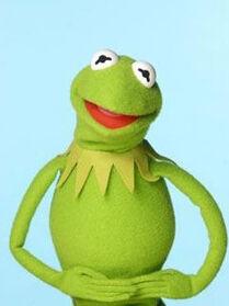 TF1-MuppetsTV-PhotoGallery-13-Kermit