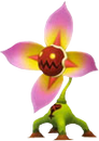 Creeper Plant KHIIFM