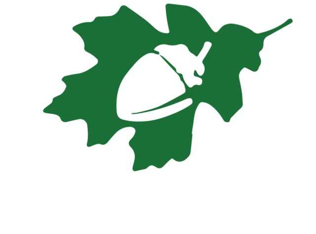 File:Great oaks logo by jarvisrama99-d94antl.png