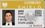 Grant ward id