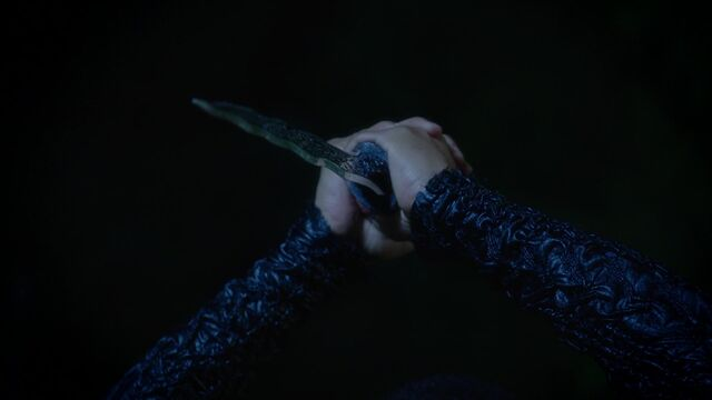 File:Once Upon a Time - 5x05 - Dreamcatcher - Risen Dagger.jpg