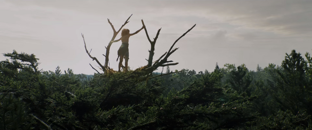 File:Pete's Dragon 2016 Shot1.png