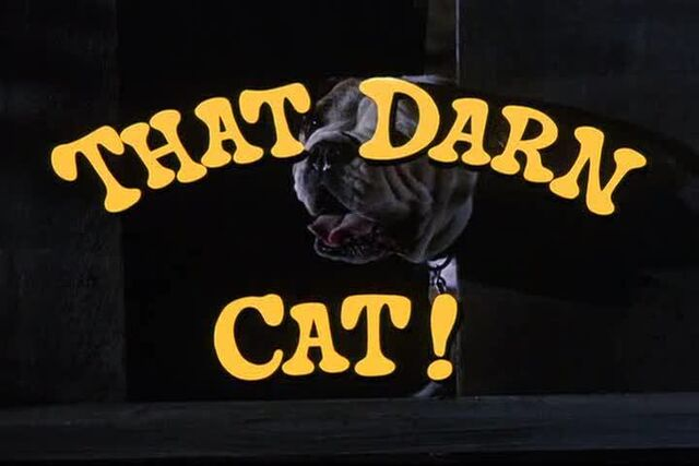 File:That Darn Cat Title.jpg