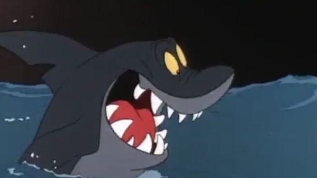 File:Tiburón.jpg
