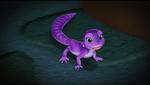 Sofia lizard