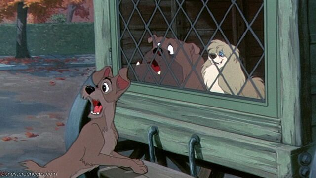 File:Tramp-disneyscreencaps com-1738.jpg
