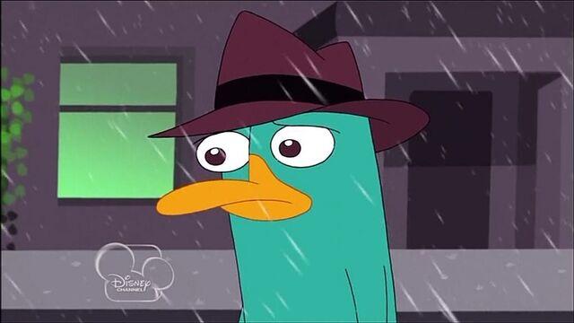File:Sad Perry I Walk Away.jpg