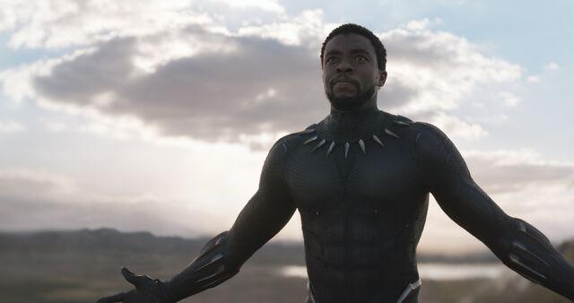 File:Black Panther (film) 30.jpg
