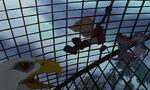 Rescuers-down-under-disneyscreencaps com-7820