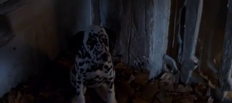 File:Lucky in 1996 film.png