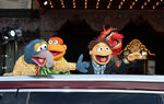 Muppets+Most+Wanted+Premiere (24)