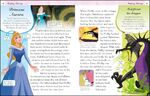 Disney Princess DK Enchanted Character Guide Aurora Illustraition