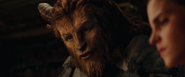 Beauty-and-the-Beast-38