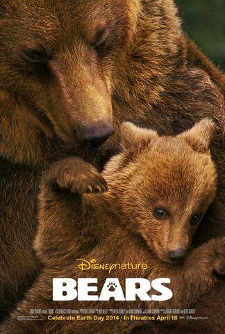 File:Bears 2014 film.jpg
