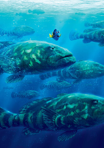 File:Finding Dory Textless 14.jpg