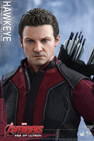File:Hawkeye AOU Hot Toys 02.jpg