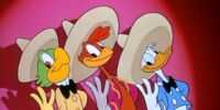 The Three Caballeros/Gallery