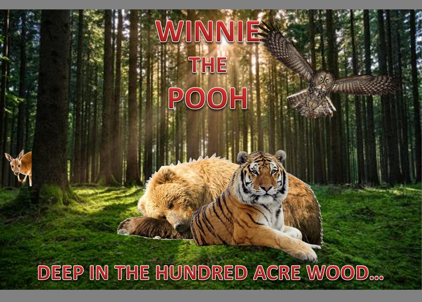 Winnie Pooh Film 2019