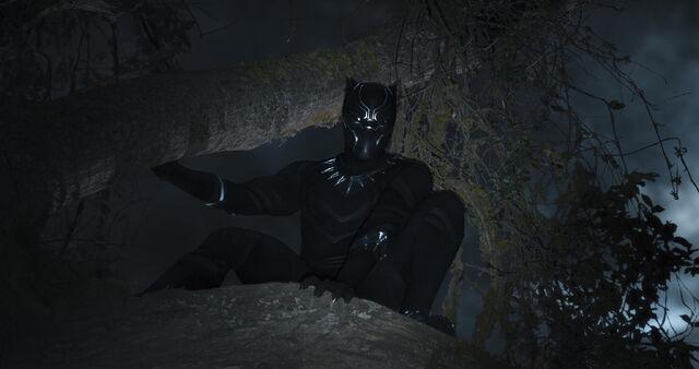 File:Black Panther (film) 14.jpg