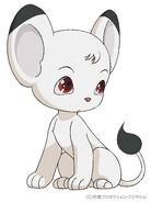 Baby Kimba