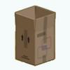 Pets - Cardboard Box