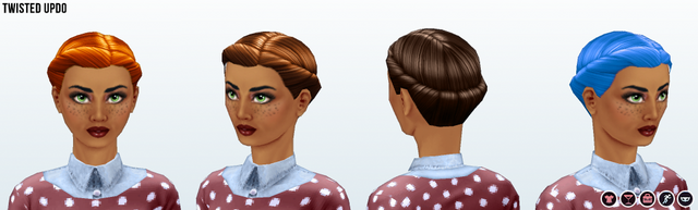 File:Career - Twisted Updo.png