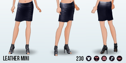 TheVault - Leather Mini