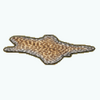 Market - Leopard Print Rug
