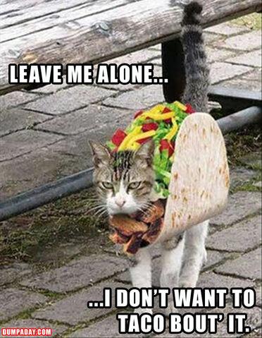 File:Taco. no..jpeg