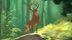 Bambi2-disneyscreencaps.com-4862