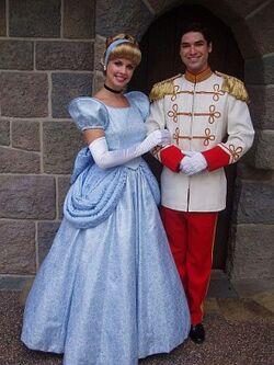 CinderellaCharmingInfoBox