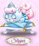 File:Slipper 6.jpg