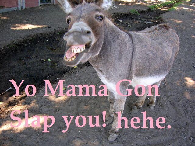 File:Donkey.jpg
