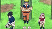 Naruto Shippuuden 257-0289