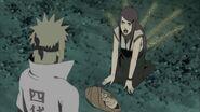 Naruto Shippuuden 249-0230