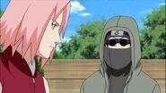 Naruto Shippuuden 214-269