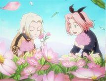 Naruto Episode080-242