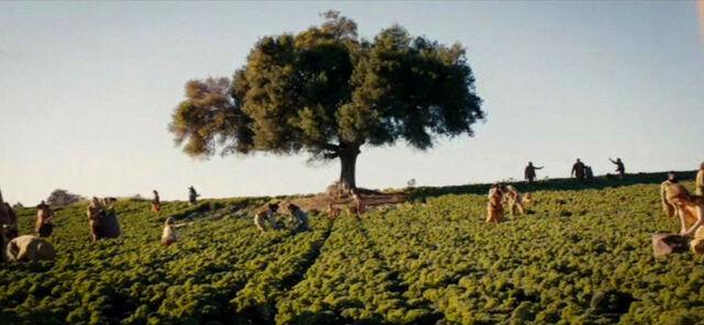File:Amity Farming the Land.jpg