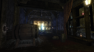 Wild Willows Manor medicine room revealed (D2 FoV location)