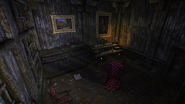 Wild Willows Manor doctor's office (D2 FoV location)