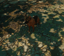 DOS Quest The Dog Seeking A Hero - Doxy