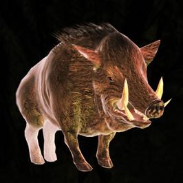 Divinity 2 Brown Boar