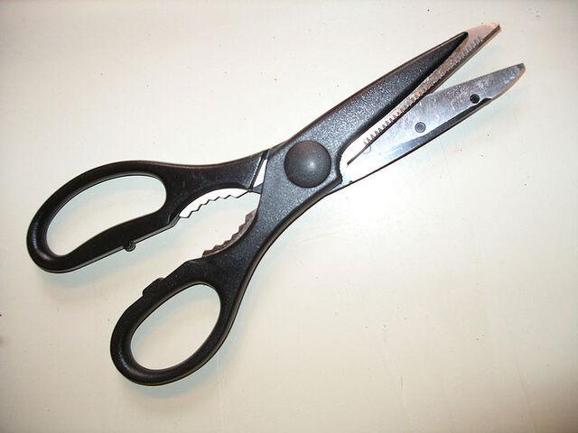 File:Scissors.jpg