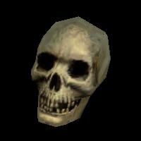 Ob skullvar02