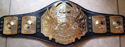 World Heavyweight Belt