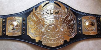 PCUW World Heavyweight Championship