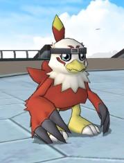 File:Hawk.jpg.jpg