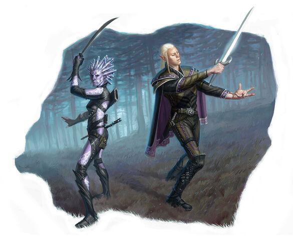 File:Swordmages by Eric Deschamps.jpg